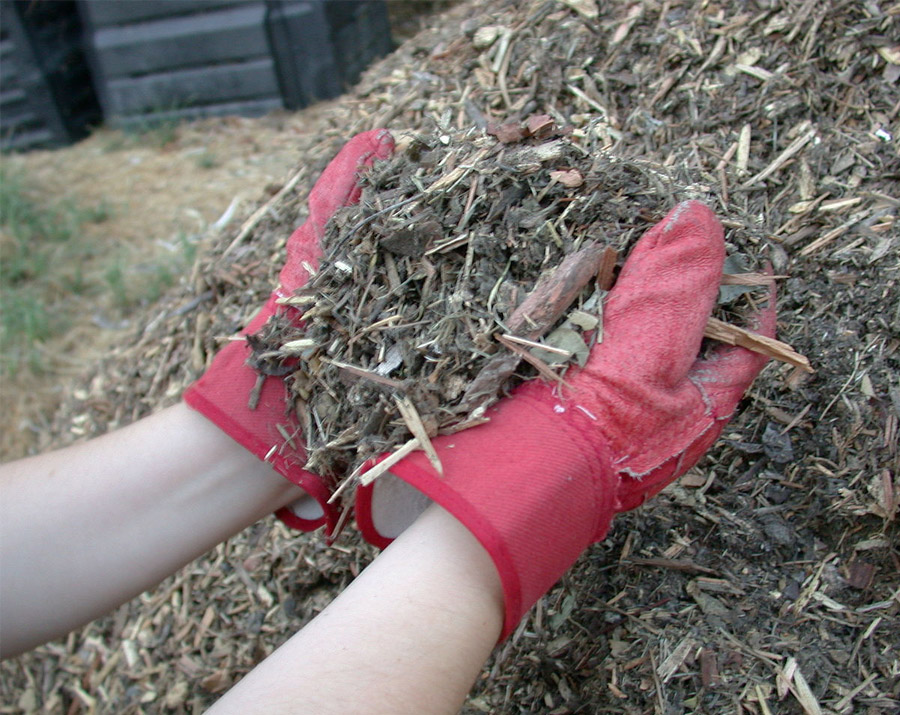 Pick Up Free Mulch to Help You Drought-Proof Your Garden!
